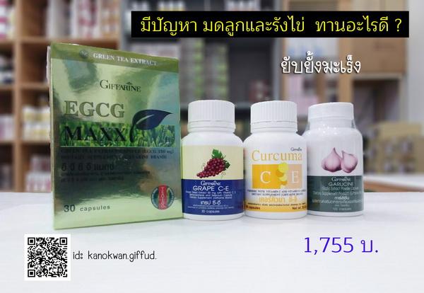 กิฟฟารีน อาหารเสริมเนื้องอกมดลูก,กิฟฟารีน อาหารเสริมมะเร็งรังไข่,กิฟฟารีน อาหารเสริมมะเร็งมดลูก,กิฟฟารีน ช็อกโกแลตชีตส์,กิฟฟารีน เคอร์คิวมา ซี อี,กิฟฟารีน อี จี ซี จี,กิฟฟารีน ชาเขียว,กิฟฟารีน ขมิ้นชัน