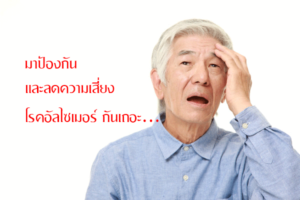 โรคอัลไซเมอร์ ทานอาหารเสริม อะไร,กิฟฟารีน โรคอัลไซเมอร์ ทานอาหารเสริมอะไร,แป๊ะก๊วย กิฟฟารีน,ขมิ้น ชัน กิฟฟารีน,โคลีน บี กิฟฟารีน,อาหารเสริม ป้องกันสมองเสื่อม กิฟฟารีน