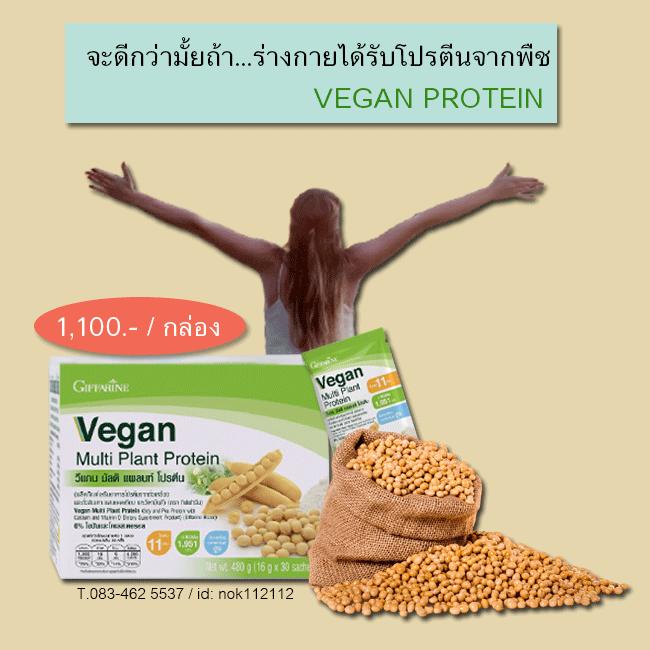 กิฟฟารีน วีแกน โปรตีน,กิฟฟารีน วีแกน มัลติ แพลนท์ โปรตีน,Giffarine Vegan Multi Plant Protein,กิฟฟารีน โปรตีนจากพืช,กิฟฟารีน โปรตีนถั่วเหลือง